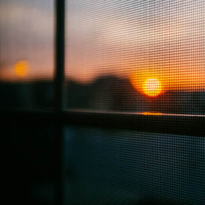 A window screen